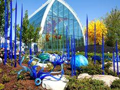 Gardens | Chihuly Garden & Glass