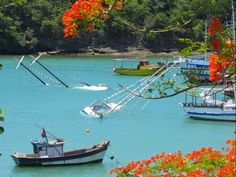 Buzios, Brazil #buzios #brazil #travel