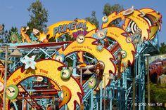 Primeval Whirl - Disney's Animal Kingdom