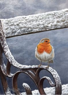 bench in winter beauty  wildlife artist Jeremy Paul