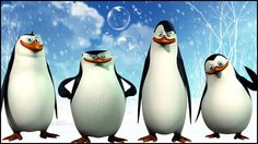Madagascar Penguins at Play | Baby Penguin Birthday Dance | Animal Finge...