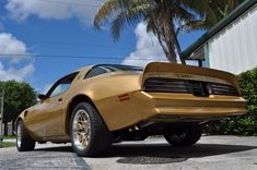 1978 Pontiac Trans Am Special Edition 1978 Trans Am, 1978 Pontiac Trans Am, Pontiac Firebird Trans Am, The Rockford Files, Ground Effects, Pontiac Cars, Car Pictures, Car Pics, American Muscle Cars