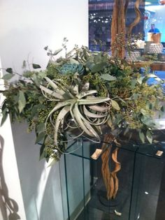 planted centerpiece with succulents, air plants, and textural elements