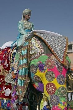 Decorated Elephant  Mahout in Jaipur, India | a visit to india | tourist of india | visit in india | tours and travel operator