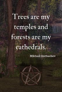 Green Witchcraft, Wiccan Witch, Pagan Witchcraft, Magick Book, Wiccan Quotes, Witch School, Nature Witch, Paz Mental, Eclectic Witch