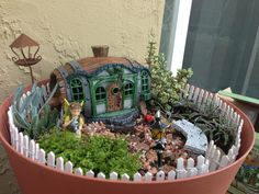 My Miniature Garden ! First and very amateur:-)