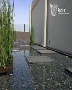 1000+ images about espejo de agua on Pinterest | Garden ... - photo#30