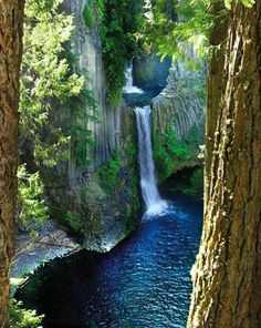 Toketee Falls, North Umpqua, Oregon among 50 other waterfalls in area just as beuatiful and even taller that you cam hike into. Beautiful Waterfalls, Beautiful Landscapes, The Places Youll Go, Places To See, Nature Landscape, Oregon Travel, Oregon Vacation, Usa Travel, Adventure Is Out There