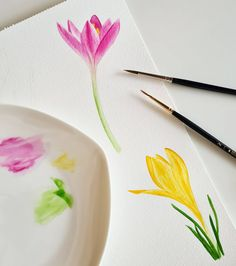 Watercolor crocus by Studio Sonate Watercolor, Studio, Illustration, Prints, Instagram, Design, Pen And Wash, Watercolor Painting