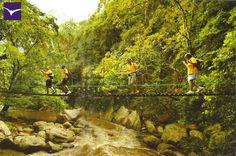 #ThrowBackThursday #TBT Entrance bridge to Ella Jungle Resort !  #EllaJungleResort #tourism #srilanka #nature #eco #travel #spiritual Like Us:https://www.facebook.com/ellajungleresort