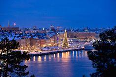 Stoccolma natalizia, inseguendo i cori di Santa Lucia - viaggi.corriere.it
