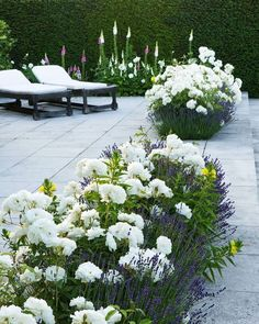 Snart tegnes sommerens første hager. Går du med en hagedrøm denne våren? Www.inperiadesign.no Interiør og hagedesign #hagedesign…