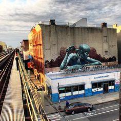 Sokar Uno (...) - Brooklyn, New York City (USA)