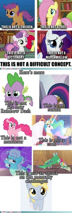 Please try to grasp that everypony!