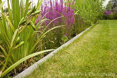 Home - Caroline Piek Photography Plants, Photography, Home, Fotografie, House, Photography Business, Ad Home, Photo Shoot, Plant