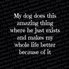 Love my dog! <3 my other dog has the same effect on my life, SHE makes everything amazing. #dogquotes