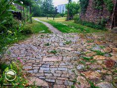 #landscape #architecture #garden #natural #path