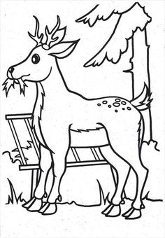 Easter Coloring Pictures, Easter Colouring, Horse Camp, Vintage Easter, Preschool Activities, Case Study, Winter, Coloring Pages, Moose Art