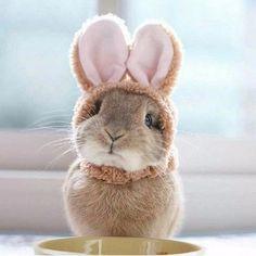 Доброе утро дорогие мои! Сегодня понедельник.... Ну что я Вам пожелаю Будьте счастливы и улыбайтесь чаще, внутри и снаружи☺️