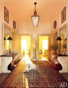 Boo, the homeowners' mixed-breed shelter dog, rests in the entrance hall in their historic Hudson Valley home.