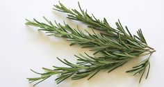 Protect Yourself from Cell phone Radiation with Rosemary