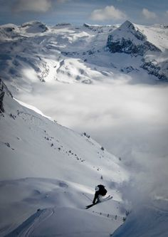 Skiing is my absolute favorite sport in the world!