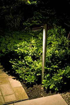 For This Path Moonlight Design Installed Hunza Border Lights In Stainless  Steel With Warm White LEDs