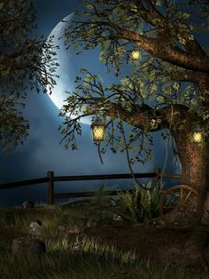 Photography Backdrop Hi Key Harvest Moon and Tree Photo Background Ultralite Fabric-Not Vinyl Full Moon Photos, Moon Pictures, Moon Pics, Studio Backdrops, Good Night Moon, Beautiful Moon, Types Of Photography, Photography Backdrops, Fantasy Photography