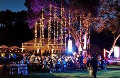 Fairy Lights | Event lighting | La Lumiere