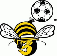 Chicago Sting Partial Logo (1975) -