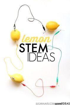 Lemon STEM ideas for kids