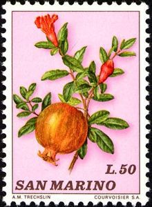 Colnect collectors club revolutionizes your collecting experience! Pomegranate Fruit, Stamp Collecting, Postage Stamps, Europe, Pomegranates, Fauna, Mailbox, Journal Ideas, Countries