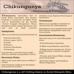 The mosquito-borne Chikungunya virus just spread to the Americas. Here's basic info about the disease, including symptoms. #science #health