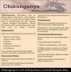 Chikungunya info.
