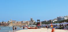 Costa molisana, confermate le 3 Bandiere Blu -> http://go.shr.lc/1IAbvVu #BandiereBlu #Termoli #Molise