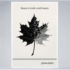 "John Keats Literary Art Print, Leaf Illustration, ""Beauty is Truth, Truth Beauty"" Quote Art Prints, Poster Prints, Illustration, Leaf Illustration, Nature Art, Art, Leaf Prints, Leaf Drawing"