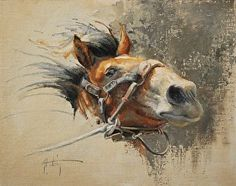 Showin' Off by Abigail Gutting, Oil, 11 x 14 Clown Paintings, Animal Paintings, Horse Paintings, Horse Drawings, Animal Drawings, Mediums Of Art, Horse Portrait, Painted Pony, Cowboy Art