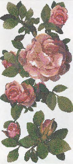 Springrose | Bisazza