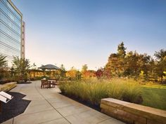 Virtua Voorhees Hospital, Voorhees, N.J. Bronze Award. Preserved vegetated areas tie in seamlessly to the surrounding native New Jersey Pine Barrens landscape on the campus of Virtua Voorhees Hospital, designed by HGA Architects and Engineers (Minneapolis). Photo: Halkin Mason Photography.