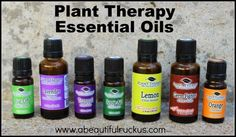 Essential Oils: Which Essential Oil Company is Best? (and reviews of five popular companies!)