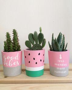 Handmade concrete pots