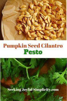 Spicy Pumpkin Soup With Cilantro Pepita Pesto Recipe — Dishmaps
