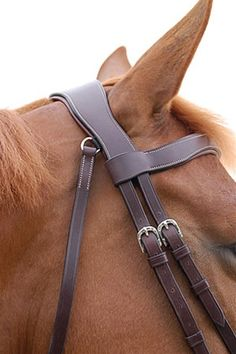 Show details for Dy'on Working Collection Fancy Flash Noseband Bridle