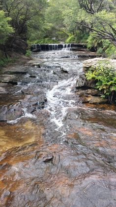 A waterfall/stream on a recent trip to the Blue Mountains near Syney, Australia.