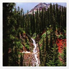 It's not hard to find a Durango waterfall if you know where to look!