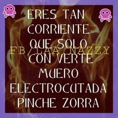 Zorra You Smile, Latinas Quotes, Hate, Lol, Humor, Memes, Lol Quotes, Jokes, Funny