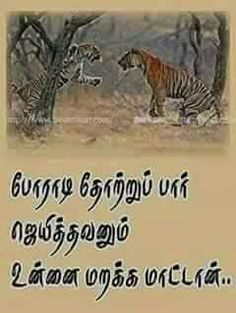 Kkkkk Wiser Quotes, Strong Quotes, Positive Quotes, Tamil Motivational Quotes, Inspirational Quotes, Photo Quotes, Picture Quotes, Good Morning Love Messages, General Quotes
