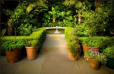 Small-Scale Courtyard Garden Beauty from Page Duke Landscape Architects