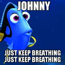 Dory: The Outsiders