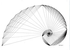 #fractal #fibonacci #goldenratio #geometry #symmetry #handmade #mathart #regolo54